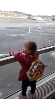 Plane gazing