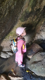 Searcing for glow worms